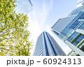 緑のあるオフィス街の風景 60924313