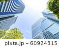 緑のあるオフィス街の風景 60924315