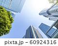 緑のあるオフィス街の風景 60924316