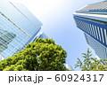 緑のあるオフィス街の風景 60924317