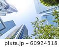 緑のあるオフィス街の風景 60924318