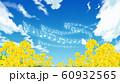 菜の花畑 60932565