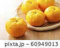 柚子 60949013