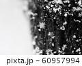 雪の結晶 60957994