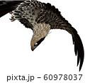 浮世絵 鷲 その1 60978037