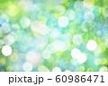 緑のボケと光 60986471