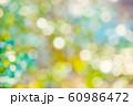 緑のボケと光 60986472