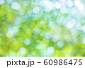 緑のボケと光 60986475