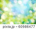 緑のボケと光 60986477