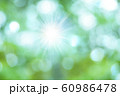 緑のボケと光 60986478