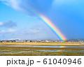 雨上がりの虹/田 1月撮影 石川県能美市 61040946