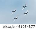 海上自衛隊のアクロバットチーム 61054377