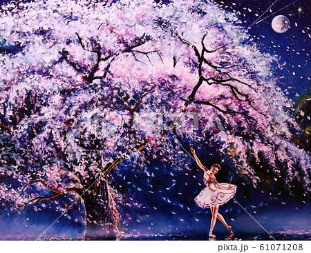 桜の舞 61071208