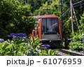 (神奈川県)箱根登山鉄道 あじさい電車 61076959