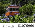 (神奈川県)箱根登山鉄道 あじさい電車 61076960