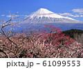 岩本山公園からの風景-222938 61099553