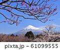 岩本山公園からの風景-222977 61099555
