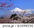 岩本山公園からの風景-222978 61099556