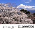 岩本山公園からの風景-222980 61099559