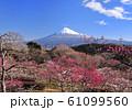 岩本山公園からの風景-222984 61099560