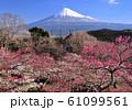 岩本山公園からの風景-222985 61099561