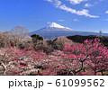 岩本山公園からの風景-222986 61099562