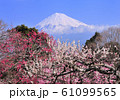 岩本山公園からの風景-222991 61099565