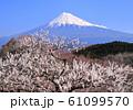 岩本山公園からの風景-223045 61099570