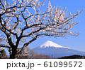 岩本山公園からの風景-223049 61099572