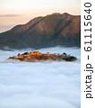 立雲峡から見る竹田城跡の雲海 61115640