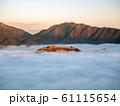 立雲峡から見る竹田城跡の雲海 61115654