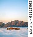立雲峡から見る竹田城跡の雲海 61115663