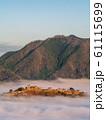 立雲峡から見る竹田城跡の雲海 61115699