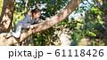 木登りをする女の子 61118426