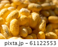 Group of silkworm in yellow cocoon stage 61122553
