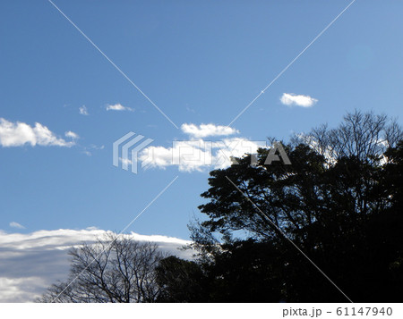 1月の青い空と白い雲 61147940