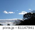 1月の青い空と白い雲 61147941