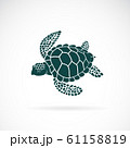 Vector of turtle design on a white background. 61158819