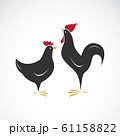 Vector of male and female chickens design. 61158822