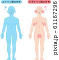 アポクリン汗腺とエクリン汗腺の分布 61167296