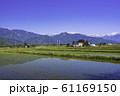 (長野県)田植えの終わった、安曇野の農村風景 61169150
