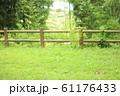鮮やかな緑の丘 61176433
