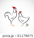 Vector of male and female chickens design. Animal. 61178675