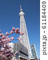 さくらと東京スカツリー 61184409