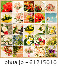 Set of 25 floral pictures on grunge old paper 61215010