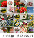 Set of 25 floral pictures for your design 61215014