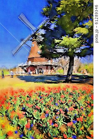 ふなばしアンデルセン公園のアイスチューリップと風車(12月)千葉県船橋市 61289346
