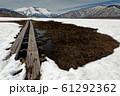 雪解けの尾瀬ヶ原と至仏山 61292362