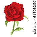 バラの花 満開 切り花 赤 61303250