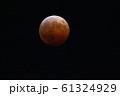 皆既月食 61324929